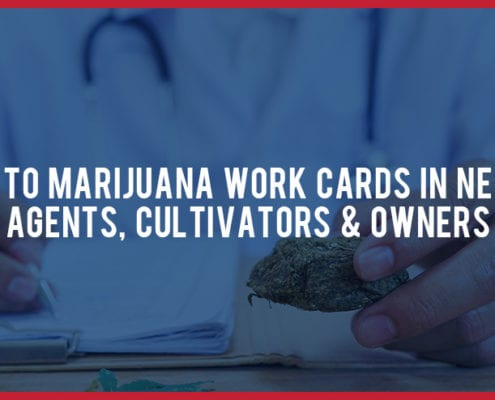 Guide To Marijuana Work Cards In NV Agents Cultivators Owners
